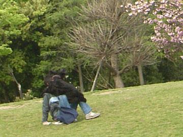 2008-04-26_16-n1.jpg