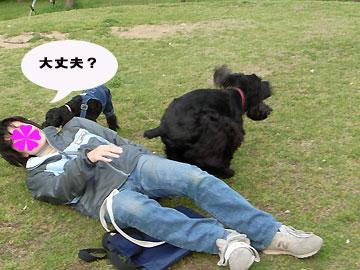 2008-04-26_1n3.jpg