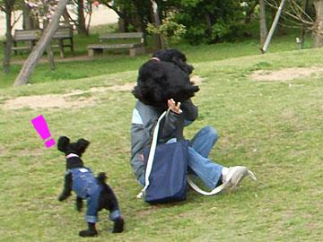 2008-04-26_n2.jpg