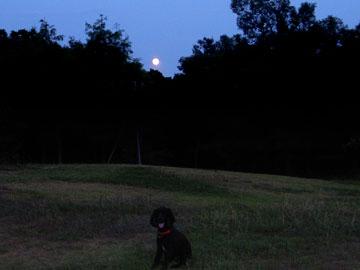 r070827-moon.jpg