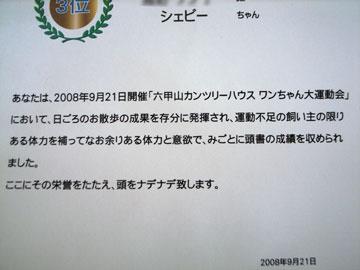 20080929093.jpg